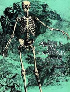 Albinus on anatomy cover image