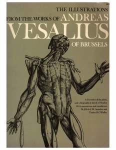 Cover Illustrations of work from Vesalius-1950